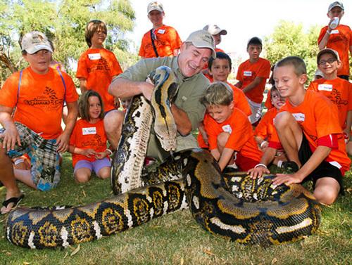 世界一長いヘビ